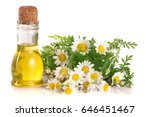 bottle with essential oil and... | Shutterstock . vector #646451467