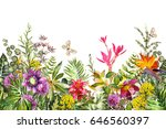 seamless  border with tropical... | Shutterstock . vector #646560397