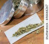 rolling paper with marijuana... | Shutterstock . vector #646666267