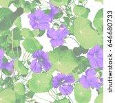 nasturtium seamless pattern.... | Shutterstock . vector #646680733