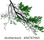 illustration with pine tree... | Shutterstock .eps vector #646767463