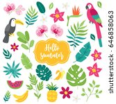 set of tropical elements.... | Shutterstock .eps vector #646858063