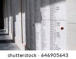 poppies are stuck onto the wall ... | Shutterstock . vector #646905643