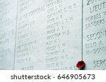 a poppy is tucked into a gap in ... | Shutterstock . vector #646905673