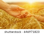 hands of father and daughter on ... | Shutterstock . vector #646971823