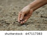 agriculture | Shutterstock . vector #647117383