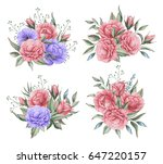 hand painted watercolor... | Shutterstock . vector #647220157