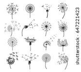 dandelion fluffy blowball in... | Shutterstock .eps vector #647221423