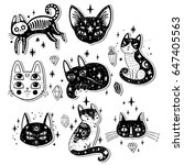 fashion set with cats  stars...   Shutterstock .eps vector #647405563