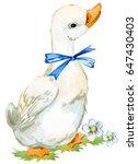 cute duck. domestic farm bird... | Shutterstock . vector #647430403