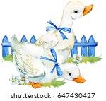 Stock photo cute duck domestic farm bird watercolor illustration 647430427