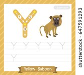 letter y uppercase tracing... | Shutterstock .eps vector #647591293