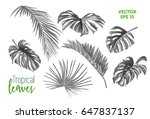 set of realistic vector... | Shutterstock .eps vector #647837137