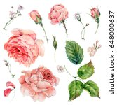 Stock photo set of vintage watercolor roses leaves buds branches flowers and wildflowers watercolor 648000637
