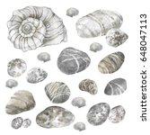 Sea Stones Seashells Graphic