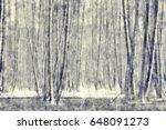 Winter Birch Forest In...