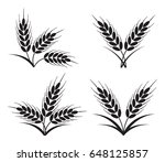 vector bunches of wheat  barley ... | Shutterstock .eps vector #648125857