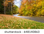 Empty Winding Forest Road On A...