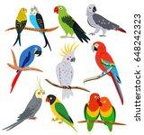 parrots set | Shutterstock .eps vector #648242323
