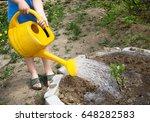 Little Toddler Boy Watering...