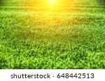 green grass texture   Shutterstock . vector #648442513