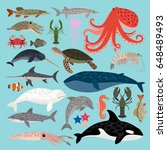 collection of sea animals   Shutterstock .eps vector #648489493