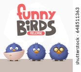 a set of funny birds from a... | Shutterstock .eps vector #648511363