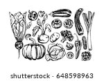 vector illustration of hand... | Shutterstock .eps vector #648598963