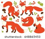vector cute forest foxes set... | Shutterstock .eps vector #648865453