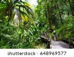 Tourist Admiring Lush Tropical...