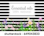 Popular Essential Oil Plants...