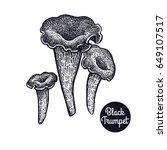 hand drawing a gourmet mushroom ... | Shutterstock . vector #649107517