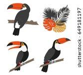 toucan set. vector illustration ... | Shutterstock .eps vector #649181197