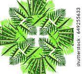 tropical hawaii leaves palm... | Shutterstock . vector #649255633