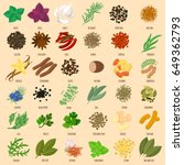 vector flat design herbs and... | Shutterstock .eps vector #649362793