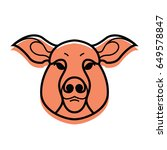 vector color image of swine or... | Shutterstock .eps vector #649578847