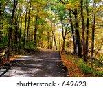 Outdoor Bike Trail In Autumn