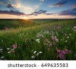 flowers on the mountain field... | Shutterstock . vector #649635583