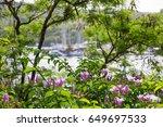 antigua  beautiful tropical... | Shutterstock . vector #649697533