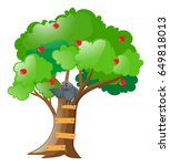 Gray Owl On Apple Tree...