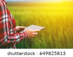 female farmer using tablet in... | Shutterstock . vector #649825813
