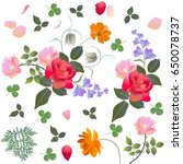 leaves  petals and bouquet of... | Shutterstock .eps vector #650078737