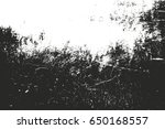 distressed overlay texture of... | Shutterstock .eps vector #650168557