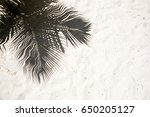 palm trees cast shadows on the... | Shutterstock . vector #650205127