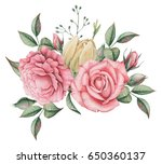 hand painted watercolor... | Shutterstock . vector #650360137