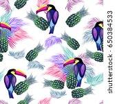 Bright Abstract Toucan  Birds ...