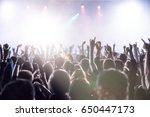 cheering crowd at a rock concert | Shutterstock . vector #650447173