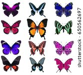collection of colorful... | Shutterstock . vector #650562697