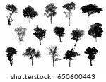 black tree silhouettes on white ... | Shutterstock . vector #650600443