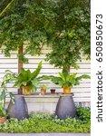 different green beautiful fresh ... | Shutterstock . vector #650850673